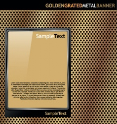 gold metal plate vector image