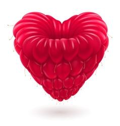 Malina heart 01 vector