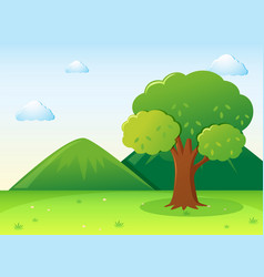 nature scene with tree in park vector image