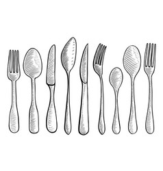 spoon and knife vector image vector image