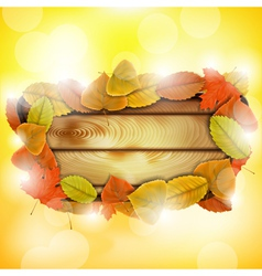 Wooden board with autumn colorful leaves vector image vector image