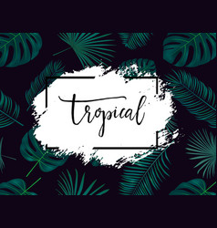 Summer tropical background with exotic palm vector
