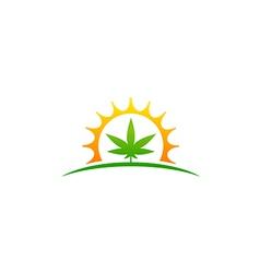 Marijuana leaf cannabis medicine logo vector