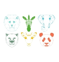 Isolated wild animal heads vector