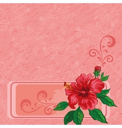 Floral background hibiscus and contours vector