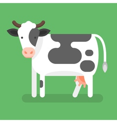 flat style of cow Isolated on green background vector image
