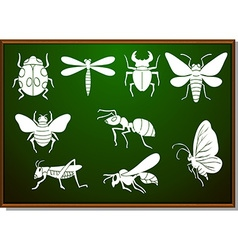Silhouette set of many bugs vector