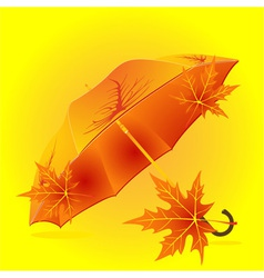 Autumn umbrella vector