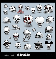 scull collection vector image