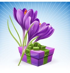 Gift and flowers vector image