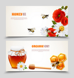 Honey banner set vector