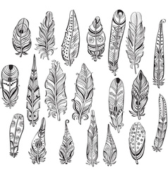 Set of ethnic feathers in native style vector