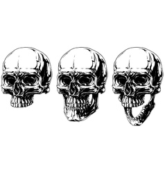 Cool detailed horror human skull graphic set vector