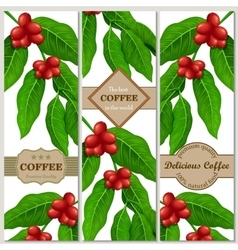 Set of banners with coffee branch and beans vector
