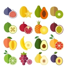Set of flat design icons for fruits vector