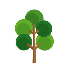 cartoon tree natural botanic image vector image