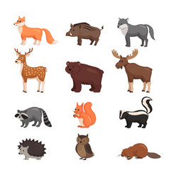 forest animals set vector image