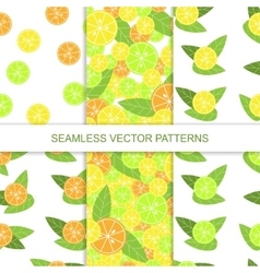 Set of seamless citrus pattern lemon pattern vector