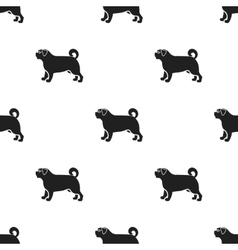Pug icon in black style for web vector image vector image