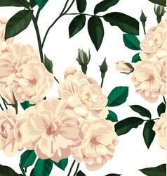rose seamless pattern vector image