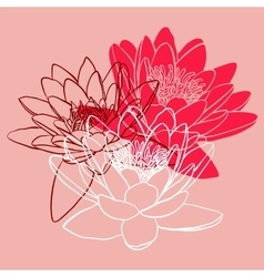 Floral background with water lily vector
