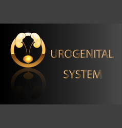 urogenital system kidneys bladder emblem vector image vector image