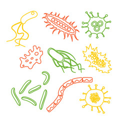 different bacteria types vector image
