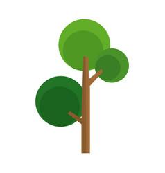 cartoon tree natural foliage woody image vector image