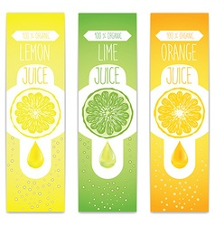 Lemon lime and orange fresh juice label template vector