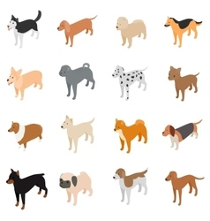 Dog icons set isometric 3d style vector