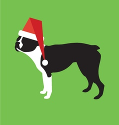 Boston terrier wearing a santa claus hat vector