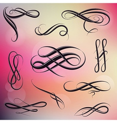 Calligraphy swirls vector