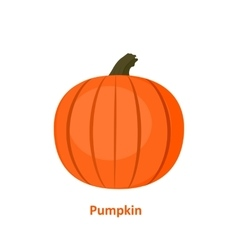 Tasty and healthy vegetable pumpkin vector