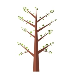 Spring tree flat icon vector
