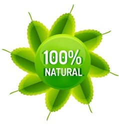 Green eco concept - natural vector