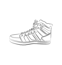 contour shoes cartoon sneaker vector image