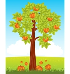 Aple tree with red apple vector