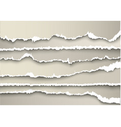 Set of sheets of paper torn gray vector