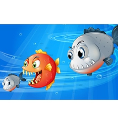 Three scary fishes vector image