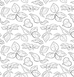 Hand drawn seamless pattern with foliage of rose vector