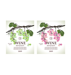 Set of two conceptual labels for wine vector image