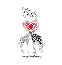 Two lovers giraffe vector image