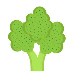 Broccoli flat icon vegetable and diet vector