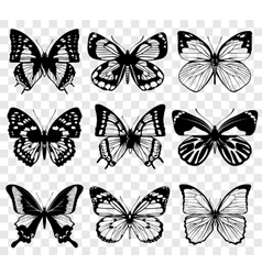 Butterflies isolated on transparent vector