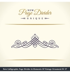 New calligraphic page dividers and elements of vector
