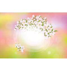 Spring frame flowers vector