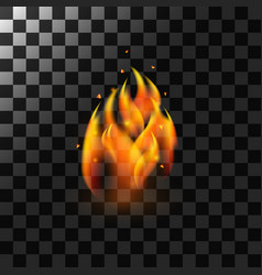 Fire flame element vector