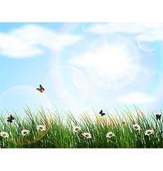 Nature background of beautiful vector