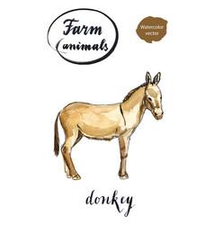 beige standing donkey vector image