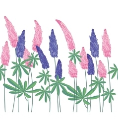 Seamless pattern brush with lupinus Endless vector image